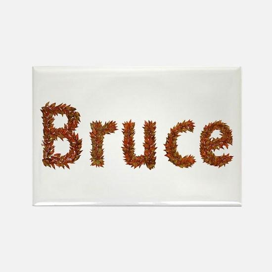 Bruce Fall Leaves Rectangle Magnet 100 Pack