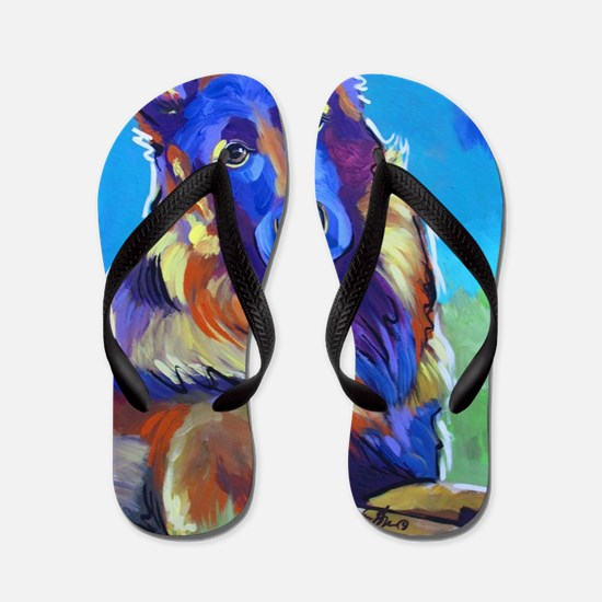 Shiloh Shepard Flip Flops