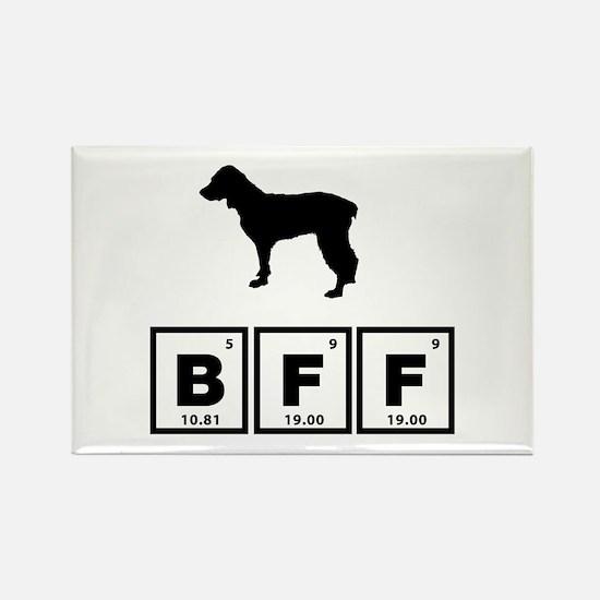 Boykin Spaniel Rectangle Magnet (100 pack)