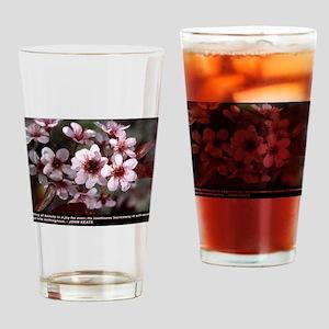 AThingOfBeauty Drinking Glass