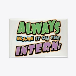 Blame the Intern Rectangle Magnet