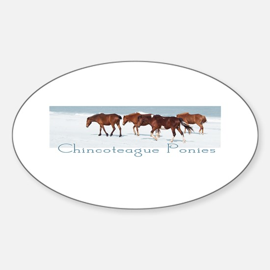 Chincoteague Ponies Oval Decal
