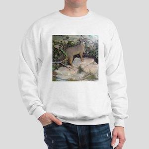 gray fox Sweatshirt