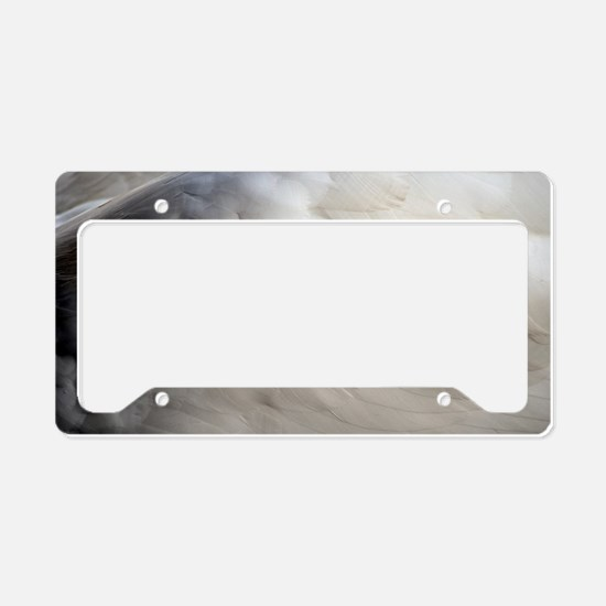 Angel Wing License Plate Holder