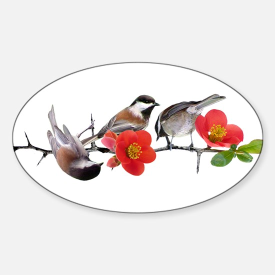 Quince Birds Sticker (Oval)