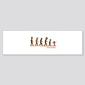 devolution of the Republicans Bumper Sticker