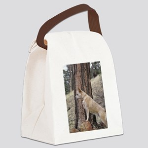 Red Heeler in Mountains Canvas Lunch Bag