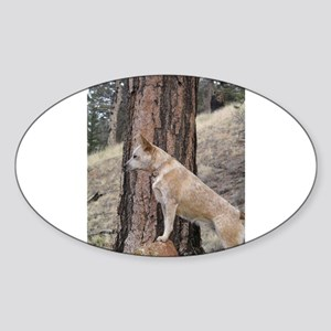 Red Heeler in Mountains Sticker (Oval)