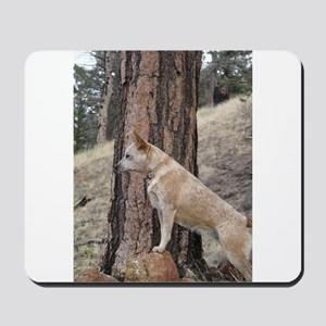 Red Heeler in Mountains Mousepad
