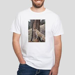 Red Heeler in Mountains White T-Shirt