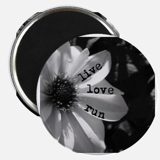 Live Love Run by Vetro Designs Magnet