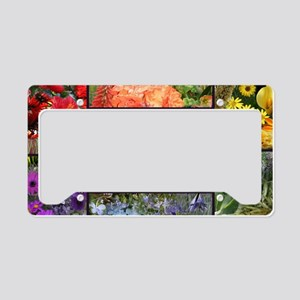 Rainbow colored Earth Laughs  License Plate Holder