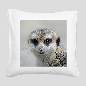 Meerkat001 Square Canvas Pillow