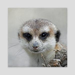 Meerkat001 Queen Duvet