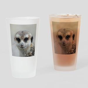 Meerkat001 Drinking Glass