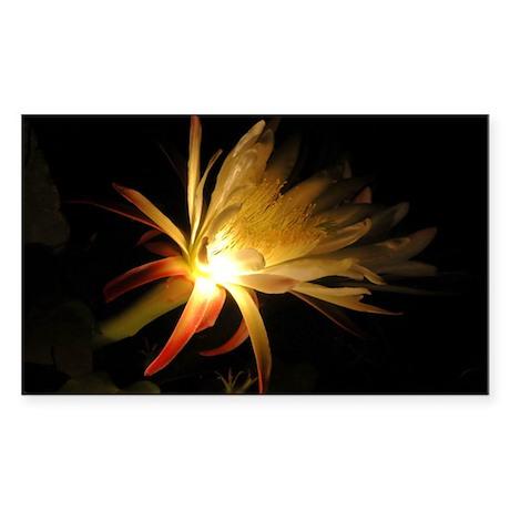 Cereus Cactus Blossom Rectangle Sticker
