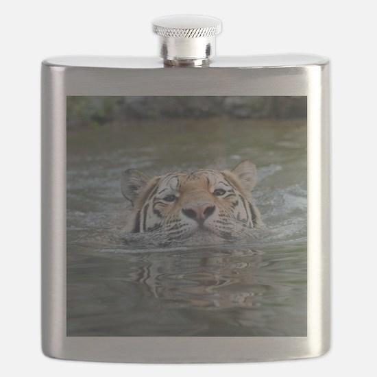 Tiger005 Flask
