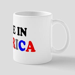 MADE IN AMERICA Mugs