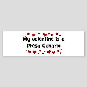 Presa Canario valentine Bumper Sticker