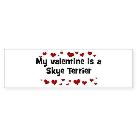 Skye Terrier valentine Bumper Sticker