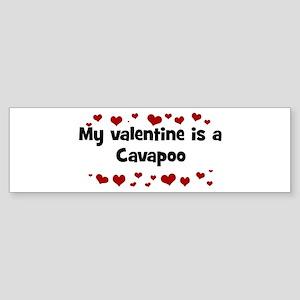 Cavapoo valentine Bumper Sticker
