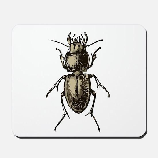 Pasimachus depressus Beetle Mousepad