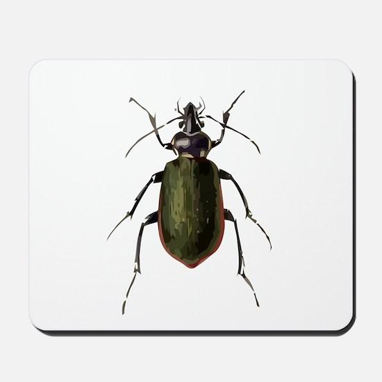 Calosoma Scrutator Beetle Mousepad