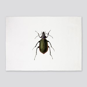 Calosoma Scrutator Beetle 5'x7'Area Rug