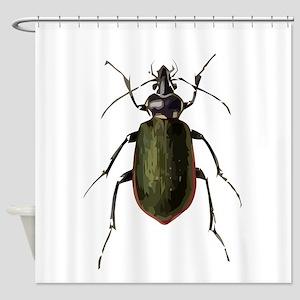 Calosoma Scrutator Beetle Shower Curtain