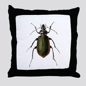 Calosoma Scrutator Beetle Throw Pillow