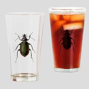 Calosoma Scrutator Beetle Drinking Glass