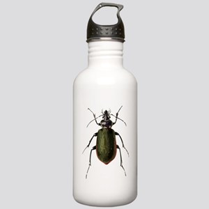 Calosoma Scrutator Beetle Sports Water Bottle