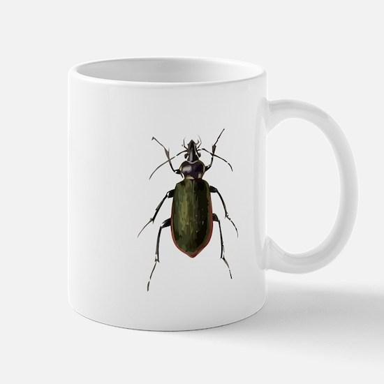 Calosoma Scrutator Beetle Mugs