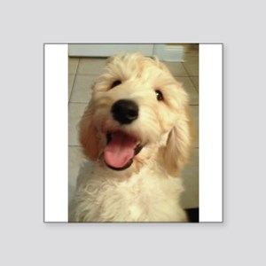 Happy Goldendoodle Sticker