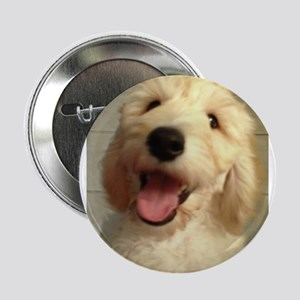 "Happy Goldendoodle 2.25"" Button"
