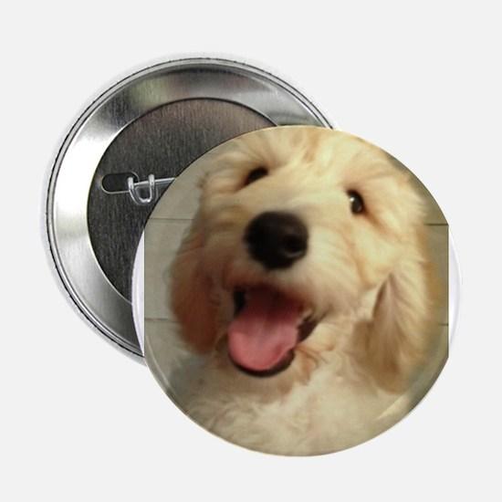 """Happy Goldendoodle 2.25"""" Button"""