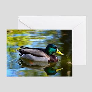 Mallard reflections Greeting Card
