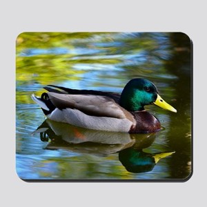 Mallard reflections Mousepad