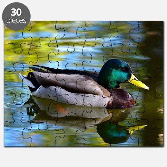 Mallard reflections Puzzle