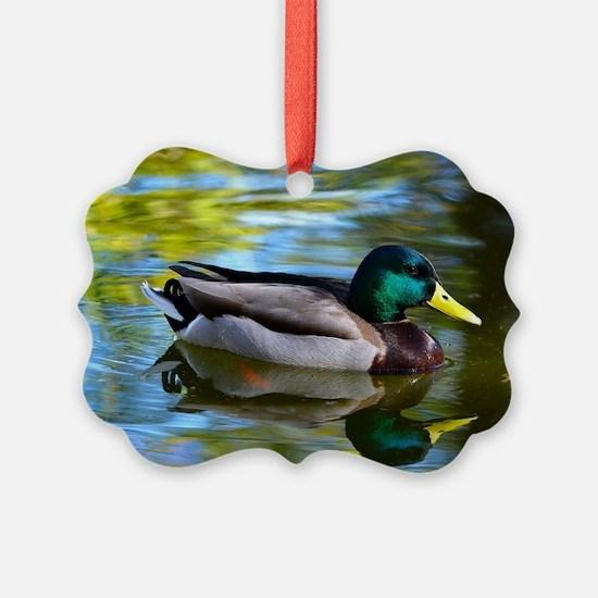 Mallard reflections Ornament