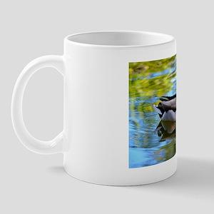 Mallard reflections Mug