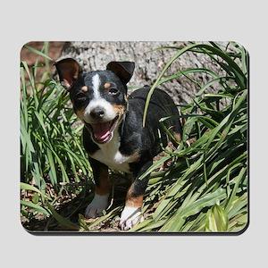 TRT Puppy Mousepad
