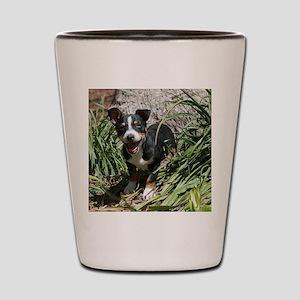 TRT Puppy Shot Glass
