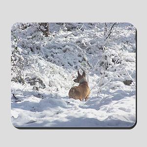 Winter Scene Teddy Roosevelt Terrier Mousepad