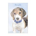 Beagle Mini Poster Print