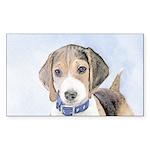 Beagle Sticker (Rectangle 10 pk)