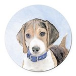 Beagle Round Car Magnet