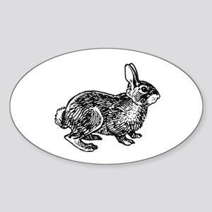 Cottontail Rabbitt (line art) Sticker