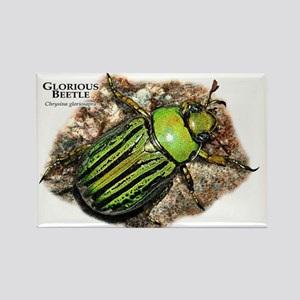 Glorious Beetle Rectangle Magnet