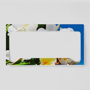 Plumeria License Plate Holder